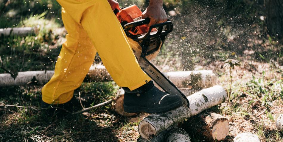 Cómo elegir los zapatos de seguridad perfectos para tu empresa